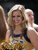 A member of the Pitt dance team. The Pitt Panthers defeated the New Mexico Lobos 49-27 on Saturday, September 14, 2013 at Heinz Field, Pittsburgh, Pennsylvania.
