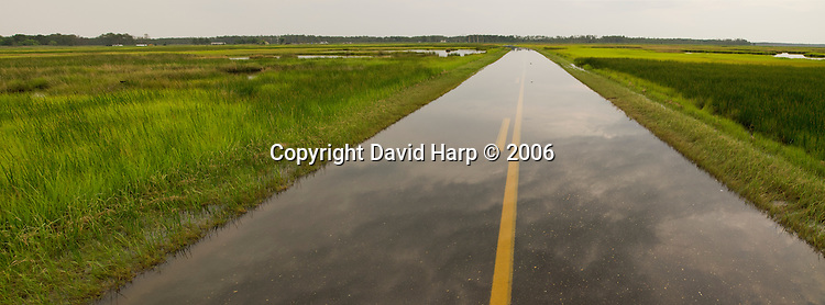 A road through the lower Dorchester County marsh floods during high tide events, an ever increasing possibility with the changing climate and sea level rise in Chesapeake Bay.