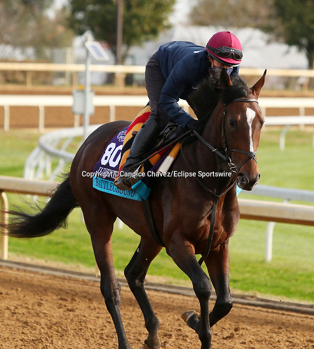 Battleground, trained by trainer Aidan P. O'Brien, exercises in preparation for the Breeders' Cup Juvenile Turf at Keeneland Racetrack in Lexington, Kentucky on November 5, 2020.