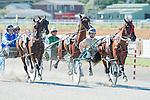 Harness Racing at Waterlea, 22 January