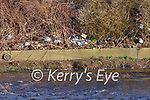 Rubbish on the bank of the Feale in Listowel.