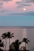 Moon setting over ocean with palm trees. Maui, Hawaii