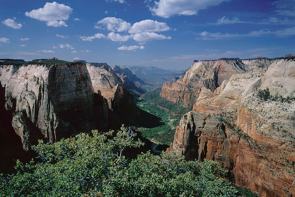 Angels Landing overlooking the Virgin River and Zion Canyon in Zion National Park, St. George, Utah, USA.