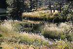 Images from the trail to Lake Margaret near Hope Valley, Ca., on Saturday, Sept. 26, 2015.  <br /> Photo by Cathleen Allison