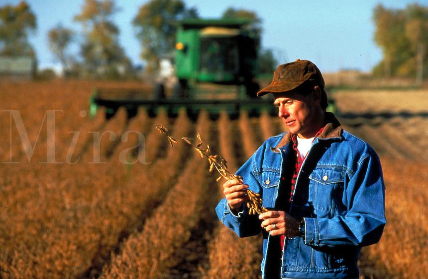 A farmer in soybean field during harvest season in Iowa.