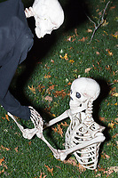 Life-sized skeletons are dressed up for Halloween decorations along Hillcrest Road in Belmont, Massachusetts, USA, on Mon., Oct. 30, 2017. A resident said the neighborhood has been doing similar coordinated decorations along the road for the previous 3 or 4 years.  In this image, one skeleton is helping another rise from underground.