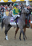 10 May 15: Paddy O'Prado (no. 10), ridden by Kent Desormeaux, before the 135th running of the grade 1 Preakness Stakes for three year olds at Pimlico Race Track in Baltimore, Maryland.