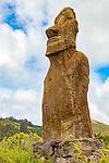 Moai, Ahu Huri a Urenga