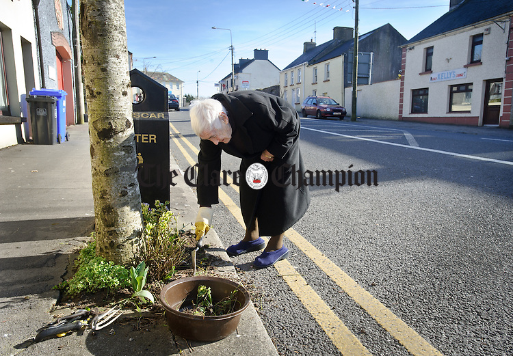 90 year old Maisie Gallagher planting flowers on the footpath outside her home at Georges Street, Gort. Photograph by John Kelly.