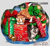 Liz,CHRISTMAS ANIMALS, WEIHNACHTEN TIERE, NAVIDAD ANIMALES,kittens,cats, LizDillon, paintings+++++,USHCLD0353,#XA#