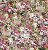 Interlitho, Kim, GIFT WRAPS, paintings, cats, flowers(KL7059,#GP#) everyday