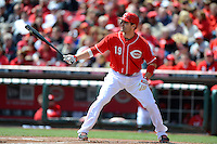 Cincinnati Reds first baseman Joey Votto #19 during a game against the Miami Marlins at Great American Ball Park on April 20, 2013 in Cincinnati, Ohio.  Cincinnati defeated Miami 3-2 in 13 innings.  (Mike Janes/Four Seam Images)