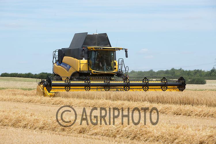 Start of Winter Barley harvest in Lincolnshire <br /> Picture Tim Scrivener 07850 303986<br /> ….covering agriculture in the UK….