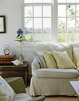 The natural world beyond the window is echoed inside with this calm, neutral palette sitting room in Victoria Hagan's Montauk beach retreat. A solitary pop of strong colour comes from a single Hydrangea bloom.