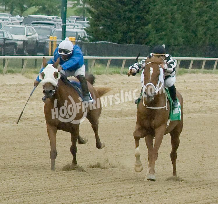 TM Junior Johnson winning The Alec Courtelis Arabian Juvenile Stakes at Delaware Park on 7/4/11