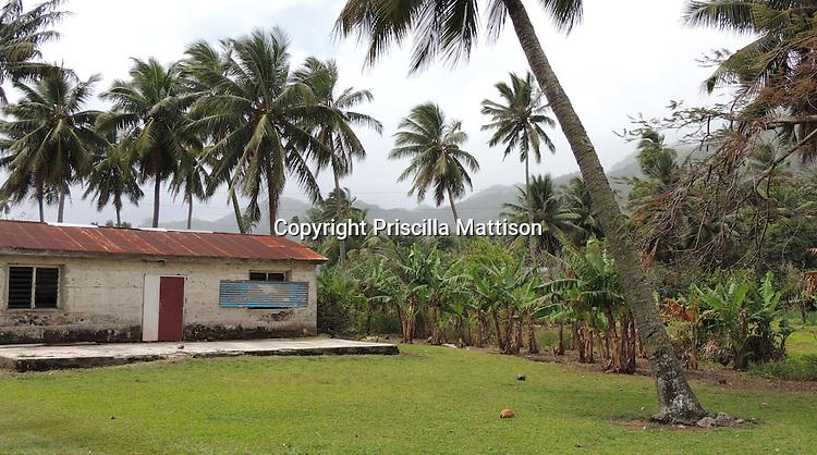 Rarotonga, Cook Islands - September 21, 2012:  A palm tree leans toward a house.