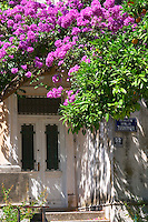 An old house painted white, trees with lilac violet flowers in bloom, orange tree with oranges. Uvala Sumartin bay between Babin Kuk and Lapad peninsulas. Dubrovnik, new city. Dalmatian Coast, Croatia, Europe.