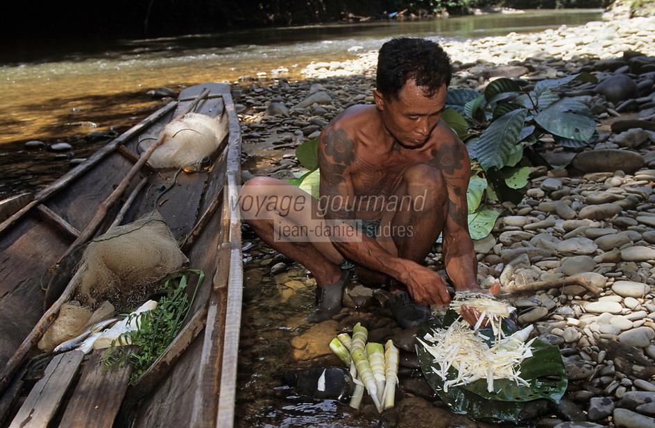 Asie/Malaisie/Bornéo/Sarawak: Chez les Dayak: La cuisine de la jungle - Pousses de bambou et fougères