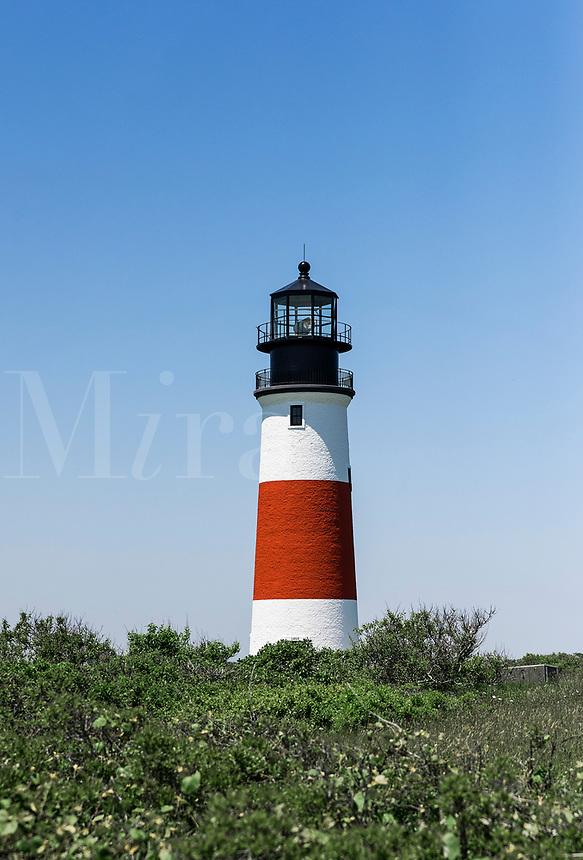 Sankaty Lighthouse in Siasconset, Nantucket, Massachusetts, USA,