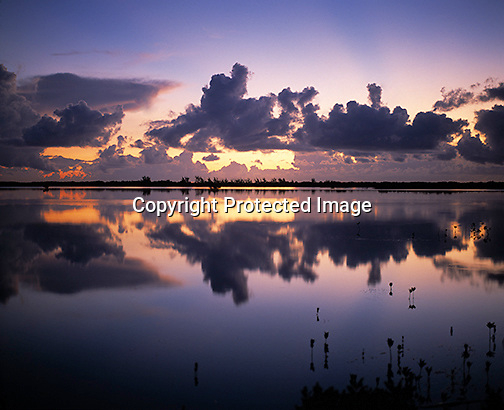 Reflection of clouds on the bay in the Florida Keys at sunset with mangrove trees