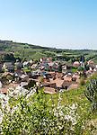 Germany, Baden-Wurttemberg, Bickensohl at Kaiserstuhl: famous wine village | Deutschland, Baden-Wuerttemberg, Bickensohl am Kaiserstuhl: bekannter Weinbauort