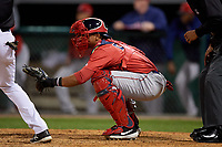 Lowell Spinners catcher Jonathan Diaz (29) during a NY-Penn League Semifinal Playoff game against the Batavia Muckdogs on September 4, 2019 at Dwyer Stadium in Batavia, New York.  Batavia defeated Lowell 4-1.  (Mike Janes/Four Seam Images)