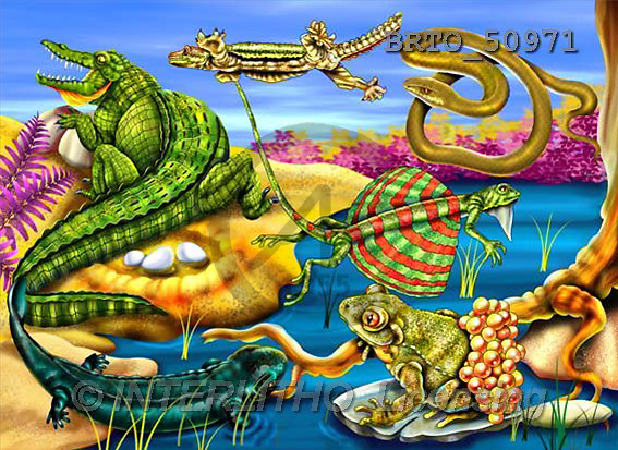 Alfredo, CUTE ANIMALS, puzzle, paintings(BRTO50971,#AC#) illustrations, pinturas, rompe cabeza