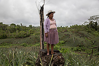 """COCA GROWERS """"COCALEROS"""", THE STRENGTH BEHHIND PROTESTS IN BOLIVIA (2019)"""