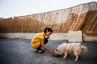 Rada an Afghan girl feeds her dog at her house. /Felix Features