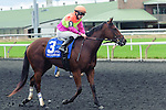 Appeal to the Win(3) with Jockey David Moran aboard after the Natalma Stakes at Woodbine Race Course in Toronto, Canada on September 13, 2014 with Jockey Patrick Husbands aboard.