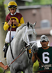 July 21, 2012  Awesome Maria, Ramon Dominguez up, walks in the paddock before competing in the Delaware Handicap at Delaware Park, Stanton, DE. The Todd Pletcher-trained mare finished third in the race, which was won by Royal Delta. ©Joan Fairman Kanes/Eclipse Sportswire