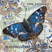 Isabella, REALISTIC ANIMALS, REALISTISCHE TIERE, ANIMALES REALISTICOS, paintings+++++,ITKE066169S-L,#a#, EVERYDAY ,collage ,butterfly,butterflies
