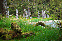 Ancient cedar totems still stand watch at the long abandoned Haida village of SGang Gwaay or Ninstints, a UNESCO World Heritage Site in Gwaii Hanaas National Park on the islands of Haida Gwaii ( formerly Queen Charlotte Islands ), British Columbia, Canada.