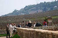 vineyard la romanee conti grande rue in back vosne-romanee cote de nuits burgundy france