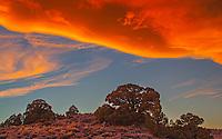 Cloudscape II, Hot Creek