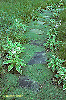 HF01-054x  Stone path in garden