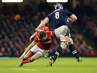 David Denton of Scotland (R) is tackled by Dan Biggar of Wales during the RBS 6 Nations Championship rugby game between Wales and Scotland at the Principality Stadium, Cardiff, Wales, UK Saturday 13 February 2016