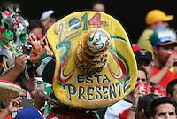 Mexican Fan's Sombrero