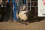 SEBRA - Chatham, VA - 3.10.2018 - Mutton Busting