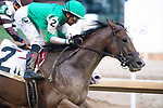 September 18, 2021: Legendary Lore #2, ridden by jockey Rafael Bejarano wins a maiden special weight at Churchill Downs in Louisville, K.Y. on September 18th, 2021. Jessica Morgan/Eclipse Sportswire/CSM