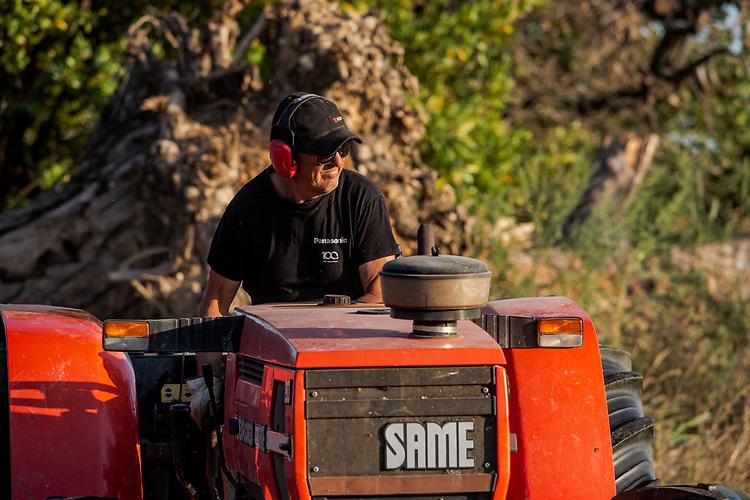 Récolte du foin de Crau à Grans