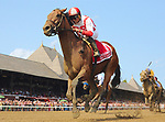 Practical Joke (no. 1), ridden by Joel Rosario and trained by Chad Brown, wins the 33rd running of the grade 1 H. Allen Jerkens Memorial Stakes for three year olds on August 26, 2017 at Saratoga Race Course in Saratoga Springs, New York. (Bob Mayberger/Eclipse Sportswire)