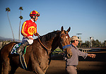 ARCADIA, CA - FEBRUARY 06: Hoppertunity #5 and jockey Flavian Prat enter the winners circle after the San Antonio Stakes at Santa Anita Park on February 06, 2016 in Arcadia, California. (Photo by Alex Evers/Eclipse Sportswire/Getty Images)