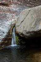 Red Rock Canyon, Nevada.  Pine Creek Canyon Stream.
