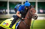 LOUISVILLE, KY - MAY 03: Thunder Snow gallops in preparation for the Kentucky Derby at Churchill Downs on May 03, 2017 in Louisville, Kentucky. (Photo by Alex Evers/Eclipse Sportswire/Getty Images)
