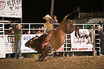 SRA - Gates, NC - 5.9.2014 - Bull Riding