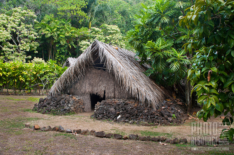 Recreated Hawaiian hut for sleeping purposes next to a breadfruit tree, Kamokila Hawaiian Village, Wailua River Valley, Kauai.