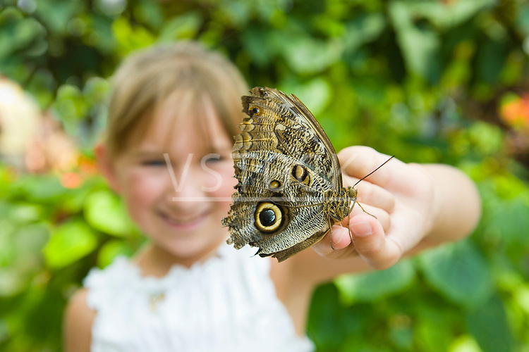 USA, Tennessee, Chattanooga, Girl (8-9) holding butterfly on finger