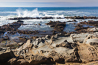 One of the occasional waves crashing into rocks and throwing spray into the air along the Bean Hollow State Beach shoreline.  In the  foreground are rocks pockmarked with tafoni formations.