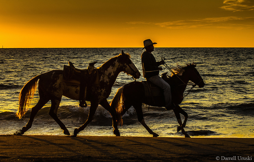 Fine Art Print, Photograph. Ocean sunset photograph of horses traveling along the beach during a beautiful sunset in Puerto Vallarta, Mexico